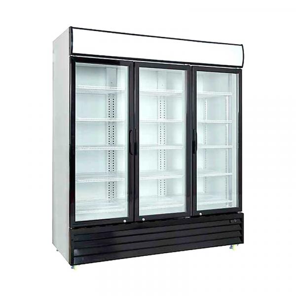 Expositor refrigerado 1500 L +FRED
